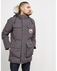 Canada Goose - Pbi Expedition Regular Fit Down Parka With Genuine Coyote Fur Trim - Lyst