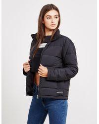Calvin Klein - Womens Lightweight Padded Jacket Black - Lyst