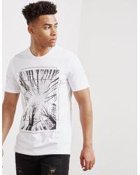 Pal Zileri - Mens Tree Box Short Sleeve T-shirt White - Lyst