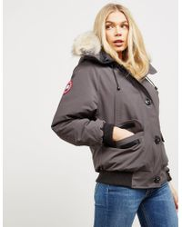 Canada Goose - Chilliwack Padded Bomber Jacket Grap/grap - Lyst