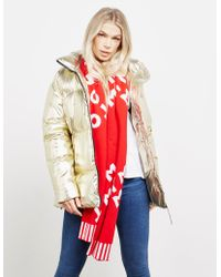 Tommy Hilfiger - Womens All Over Logo Knitted Scarf Red - Lyst