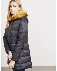 Armani Jeans - Womens Down Quilted Padded Jacket Black - Lyst