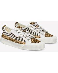 Jimmy Choo Impala Animal-print Sneakers - White