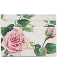 Dolce & Gabbana Dauphine Calfskin Credit Card Holder In Rose Print - Green