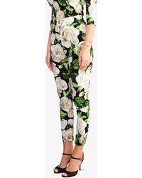 Dolce & Gabbana Silk Stretch Rose Print Skinny-fit Cropped Trousers - Green