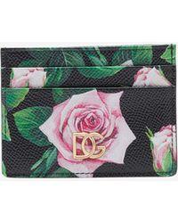 Dolce & Gabbana Dauphine Calfskin Credit Card Holder In Rose Print - Multicolor