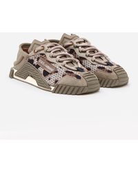 Dolce & Gabbana Ns1 Low Top Sorrento Sneakers In Leopard-print - Gray