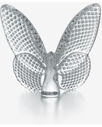 Baccarat Papillion Diamond Lucky Butterfly In Crystal - Metallic