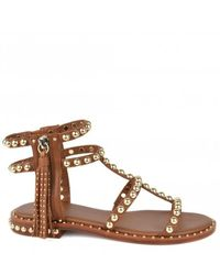 Ash Power Studded Sandal - Cuoio - Brown