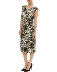 Precis Petite - Floral Printed Sheath Dress - Lyst