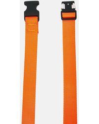 The Celect The Clip Belt - Orange