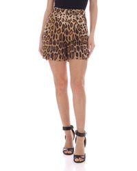 Etro Animal Print Shorts - Brown