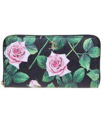 Dolce & Gabbana Tropical Rose Printed Wallet - Black