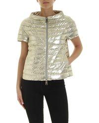 Herno Short-sleeved Laminated Down Jacket - Metallic