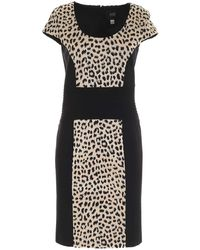 Class Roberto Cavalli - Animal Print Dress Black And Beige - Lyst