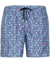 Drumohr Printed Swim Shorts - Blue