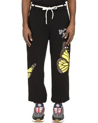 Palm Angels Stretch Cotton Track-pants - Black