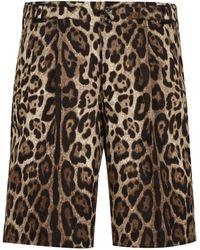 Dolce & Gabbana BERMUDA IN COTONE CON STAMPA ANIMALIER - Multicolore