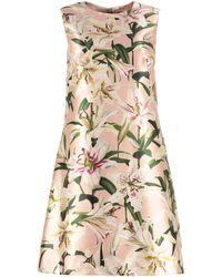 Dolce & Gabbana Vestito Lily con stampa - Rosa