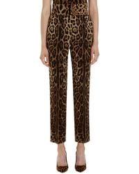 Dolce & Gabbana Printed Wool Track-pants - Brown
