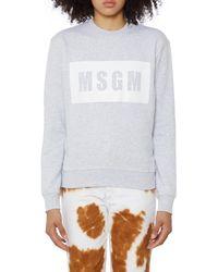 MSGM Grey Cotton Logo Sweatshirt - Gray