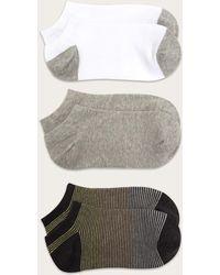 Frye No Show Socks - Gray