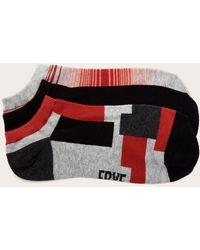 Frye 3 Pack Ombre Stripe Sock - Gray