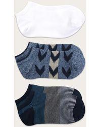 Frye No Show Socks Three-pack - Blue