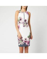 Ted Baker Nanina Neopolitan - Print Dress - Gray