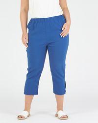 Advocado Plus Side Split Trousers - Blue