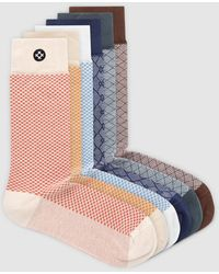 Sockdaily Shine 6 Pack Crew Socks - Multicolour