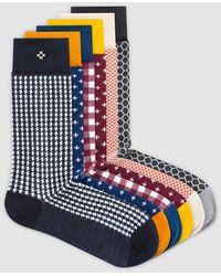 Sockdaily Gracious 6 Pack Crew Socks - Blue