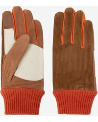 The Kooples Handschuhe Wildleder Orange und Beige - Mehrfarbig