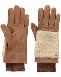 Barts - Fifi Gloves - Lyst