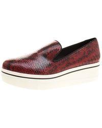 Stella McCartney Burgundy Faux Python Creeper Platform Loafers - Red