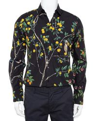 Dolce & Gabbana Midnight Blue Lemon Printed Cotton Button Front Gold Shirt