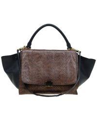 Celine Brown Python Leather Medium Trapeze Bag