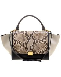 988bc08b639a Céline - Tri Color Leather And Snakeskin Medium Trapeze Tote - Lyst
