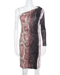 Roberto Cavalli Animal Printed Ruched One Shoulder Dress - Multicolour