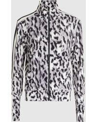 Norma Kamali Side Stripe Zip-front Stretch Turtleneck Jacket - Multicolour