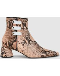 Ellery Snake Print Pointed Leather Ankle Boots - Brown