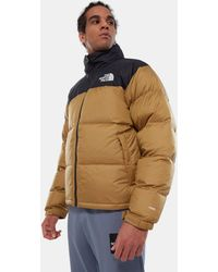 The North Face 1996 Retro Nuptse - Jack - Bruin