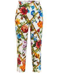 Dolce & Gabbana Cropped Floral-print Cotton And Silk-blend Jacquard Slim-leg Trousers - White