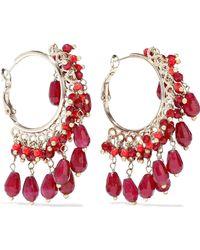 Rosantica Curry Gold-tone Beaded Hoop Earrings Claret - Red