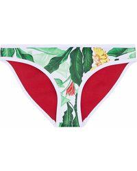 Duskii Mid-rise Printed Neoprene Bikini Briefs - Weiß