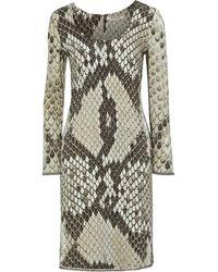 Roberto Cavalli Bead-trimmed Snake-print Cady Dress Taupe - Multicolour