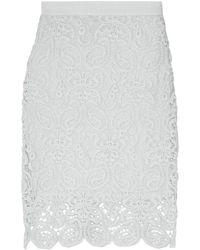 Miguelina Scarlett Cotton-lace Skirt Sky Blue