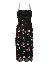 Lela Rose Bow-embellished Floral-appliquéd Corded Lace Dress Black
