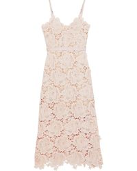 Catherine Deane Frida Floral-appliquéd Guipure Lace Midi Dress Blush - Pink