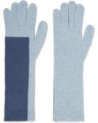 Duffy Two-tone Wool-blend Gloves - Blue